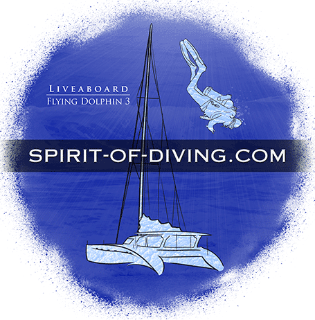 Liveaboard Diving Trips in the Philippines
