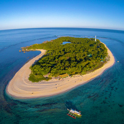 apo reef philippines liveaboard scuba diving trips