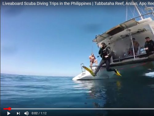 liveaboard scuba diving trips philippines