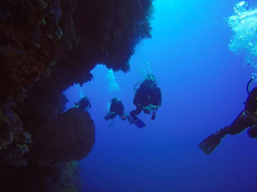 liveaboard scuba diving apo reef tubbataha reef philippines